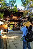 20161126石手寺 松山城 咸陽島 (Day5):DSCN7143.JPG