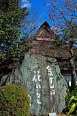 20161126石手寺 松山城 咸陽島 (Day5):DSCN7242.JPG