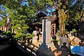 20161126石手寺 松山城 咸陽島 (Day5):DSCN7102.JPG