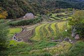20161124小豆島千牧田與橄欖公園(Day3):IMG_5316.JPG
