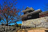 20161126石手寺 松山城 咸陽島 (Day5):DSCN7179.JPG