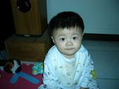 200412寶寶會爬了:1102434298.jpg