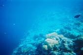 Palau:F1000016