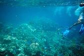 Palau:F1000020