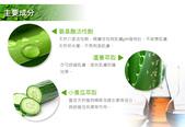 護膚保養:清潔-胺基酸潔顏乳2.jpg