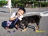 2006-08-13武陵露營:100_5700.JPG