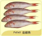 漁貨類 共38項 點我:金線魚