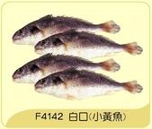 漁貨類 共38項 點我:白口魚(小黃魚)