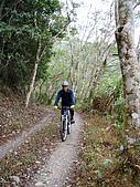 070317都飛魯溫泉:幽美的山林道路