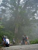 070317都飛魯溫泉:朦朧山間的大樹下-短暫歇腳