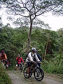 070317都飛魯溫泉:林道間景象自然