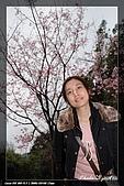 陽明山賞花行:IMG_1349.jpg
