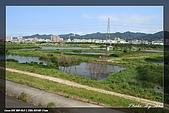 鹿角溪賞鳥:IMG_5457.jpg