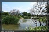 鹿角溪賞鳥:IMG_5460.jpg