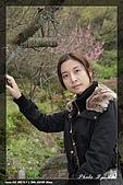 陽明山賞花行:IMG_1360.jpg