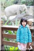 木柵動物園一遊:IMG_2626.JPG