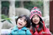 木柵動物園一遊:IMG_2629.JPG
