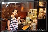 鶯歌陶瓷博物館:IMG_9300.jpg