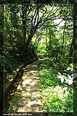 老梅青山瀑布960419:IMG_3634