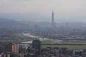 金面山960321:IMG_2872