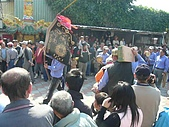 戊子年20081130台南安平威鎮堂恭送張府天師:P1110458.jpg