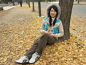 20061216大阪京都自由行:Image021