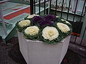 20061216大阪京都自由行:Image010