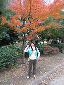 20061216大阪京都自由行:Image017