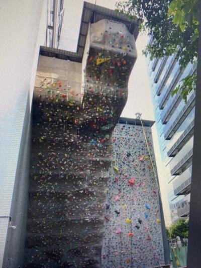 「內湖運動中心攀岩」從3層樓高摔死,女工程師未綁安全繩