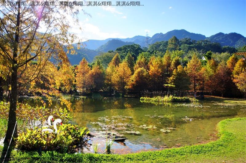 雲水渡假森林:DSC01026.jpg