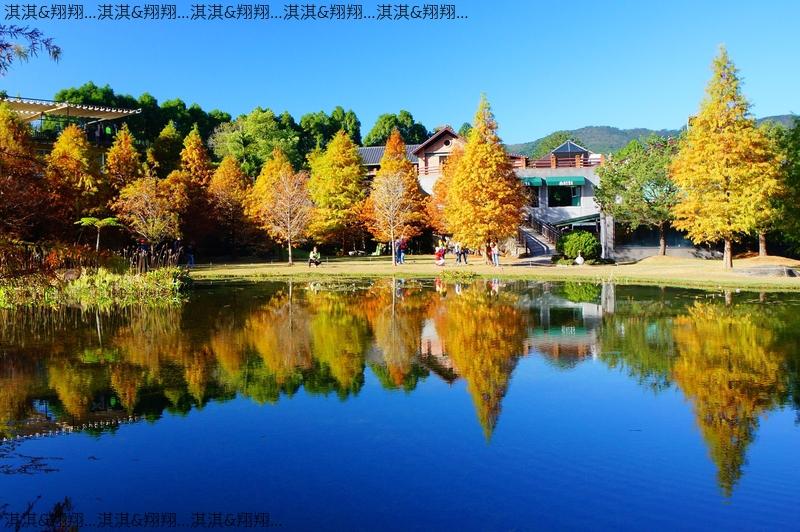 雲水渡假森林:DSC01002.jpg