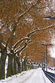 極地瑞典 2013-2-2:S082 斯德哥爾摩.jpg