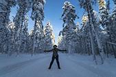 極地芬蘭 2013-2-2:F098 狗拉雪橇.jpg