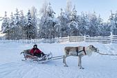 極地芬蘭 2013-2-2:F078 馴鹿雪橇.jpg