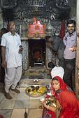 印度-第1-4天 2012-11-08:I114 老鼠廟.jpg
