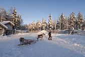 極地芬蘭 2013-2-2:F079 馴鹿雪橇.jpg