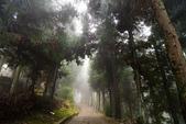 張家界武陵源 2013-11-10:c018 大觀台民宿.jpg