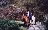 雲南 1999-05:n 07