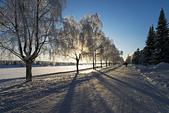 極地芬蘭 2013-2-2:F086 雪上摩托車.jpg