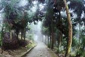 張家界武陵源 2013-11-10:c016 大觀台民宿.jpg