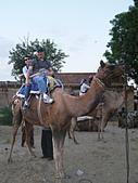 印度-第1-4天 2012-11-08:I057 沙漠騎駱駝.jpg