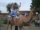 印度-第1-4天 2012-11-08:I058 沙漠騎駱駝.jpg