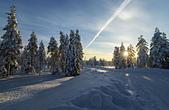 極地芬蘭 2013-2-2:F091 狗拉雪橇.jpg