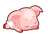 圖片:豬.jpg