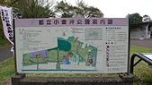 青森:都立小金井公園. 東京. 2012/04/21.