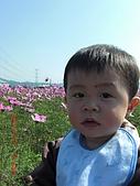 假日去私房景點看花海囉~:CIMG3140.JPG