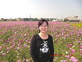 假日去私房景點看花海囉~:CIMG3155.JPG