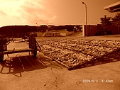2009澎湖風光:CIMG4329.jpg