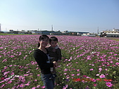 假日去私房景點看花海囉~:CIMG3147.JPG