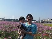 假日去私房景點看花海囉~:CIMG3139.JPG